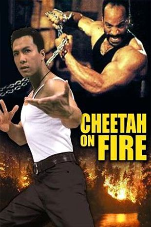 Cheetah On Fire