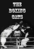 Boxing Cats (Prof. Wetton's)