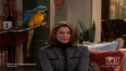 Hot in Cleveland : Lost Loves