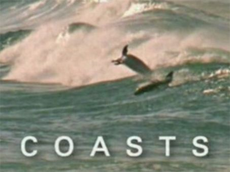 Wildest Africa : Coasts