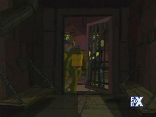 Teenage Mutant Ninja Turtles: Junklantis