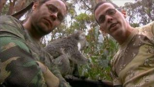 Wildboyz: Australia 2