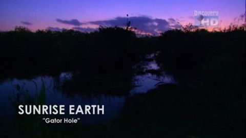 Sunrise Earth : Gator Hole