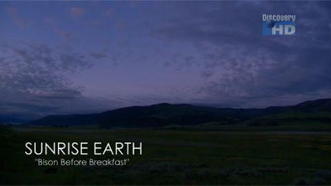 Sunrise Earth : Bison Before Breakfast