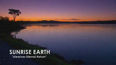 Sunrise Earth : Alewife Eternal Return