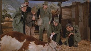M*A*S*H: 'Twas the Day After Christmas