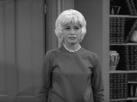 The Dick Van Dyke Show : My Blonde-Haired Brunette