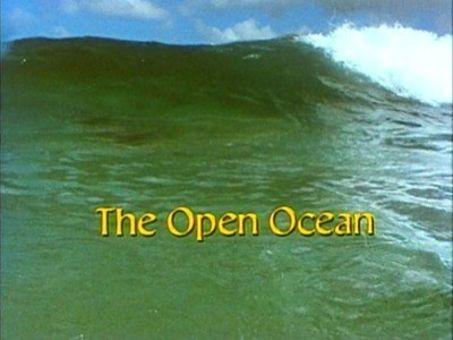 Living Planet : The Open Ocean