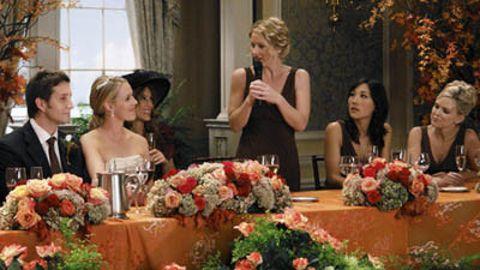 Samantha Who? : The Wedding