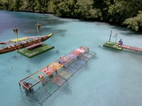 Survivor: Micronesia---Fans vs. Favorites : I'm in Such a Hot Pickle!