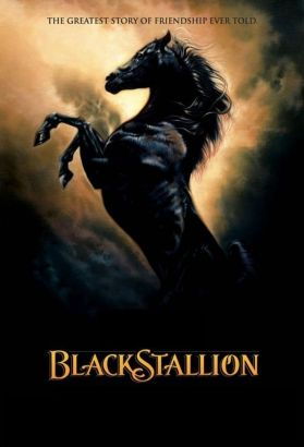 The Adventures of the Black Stallion [TV Series]
