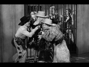 The Three Stooges : Pals and Gals