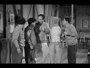 The Three Stooges : Fling in the Ring