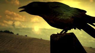 Highlander: The Raven [TV Series]