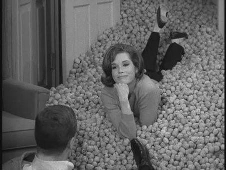 The Dick Van Dyke Show : It May Look like a Walnut