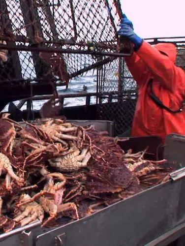 Deadliest Catch : Bering Sea Salvation