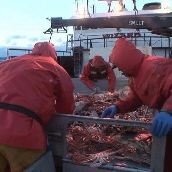 Deadliest Catch : Crossing the Line
