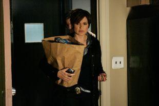 Law & Order: Special Victims Unit : Svengali