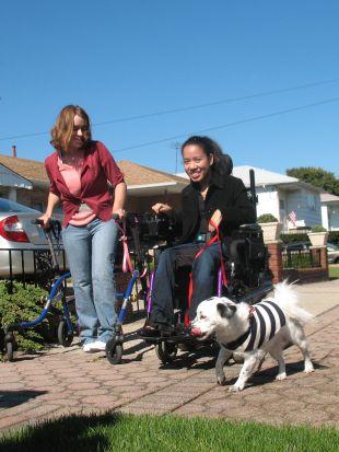 Dog Whisperer : Lives Changed