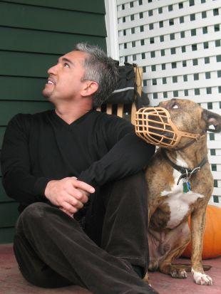 Dog Whisperer : Rufus and Buddy