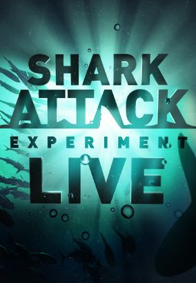 Shark Attack Experiment
