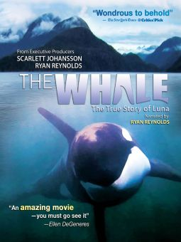 The Whale