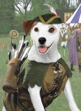 Wishbone [TV Series]