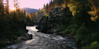 Nature: River of No Return