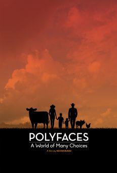 Polyfaces