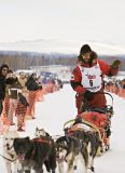 Toughest Race on Earth: Iditarod [TV Series]
