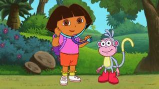 Dora the Explorer: Doctor Dora