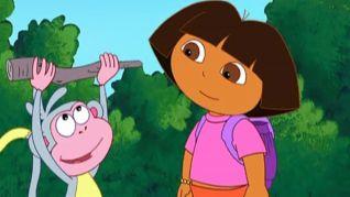 Dora the Explorer: The Magic Stick