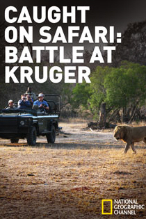 Caught on Safari: Battle at Kruger