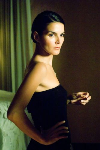 Angie Harmon born August 10, 1972 (age 46) nudes (33 photo) Hacked, Instagram, cleavage
