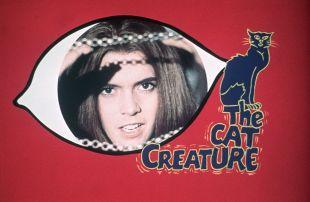 The Cat Creature