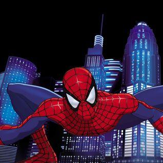 Spider-Man [Animated Series]