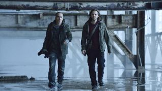 12 Monkeys: Mentally Divergent