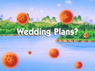 Dragon Ball : Wedding Plans?