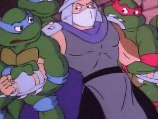 Teenage Mutant Ninja Turtles: Cowabunga Shredhead