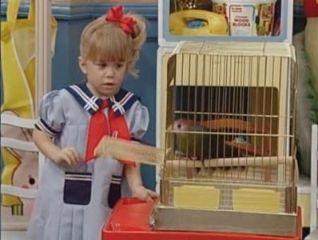 Full House: Bye, Bye Birdie