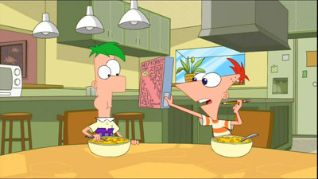 Phineas and Ferb: We Call It Maze