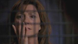 Ally McBeal: The Inmates