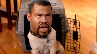Key & Peele: Puppy Dog Ice-T