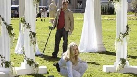 CSI: Miami : You May Now Kill the Bride
