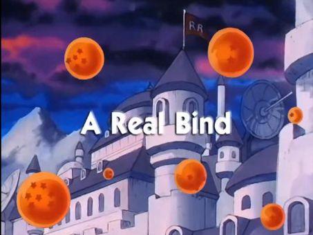 Dragon Ball : A Real Bind