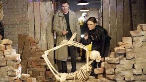 Bones : The Verdict in the Story