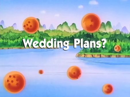 Dragon Ball : Wedding Plans?
