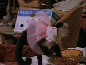 Murphy Brown: Florence Night-en Corky