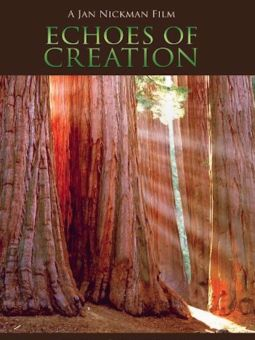Echoes of Creation