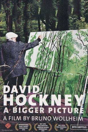 David Hockney - A Bigger Picture